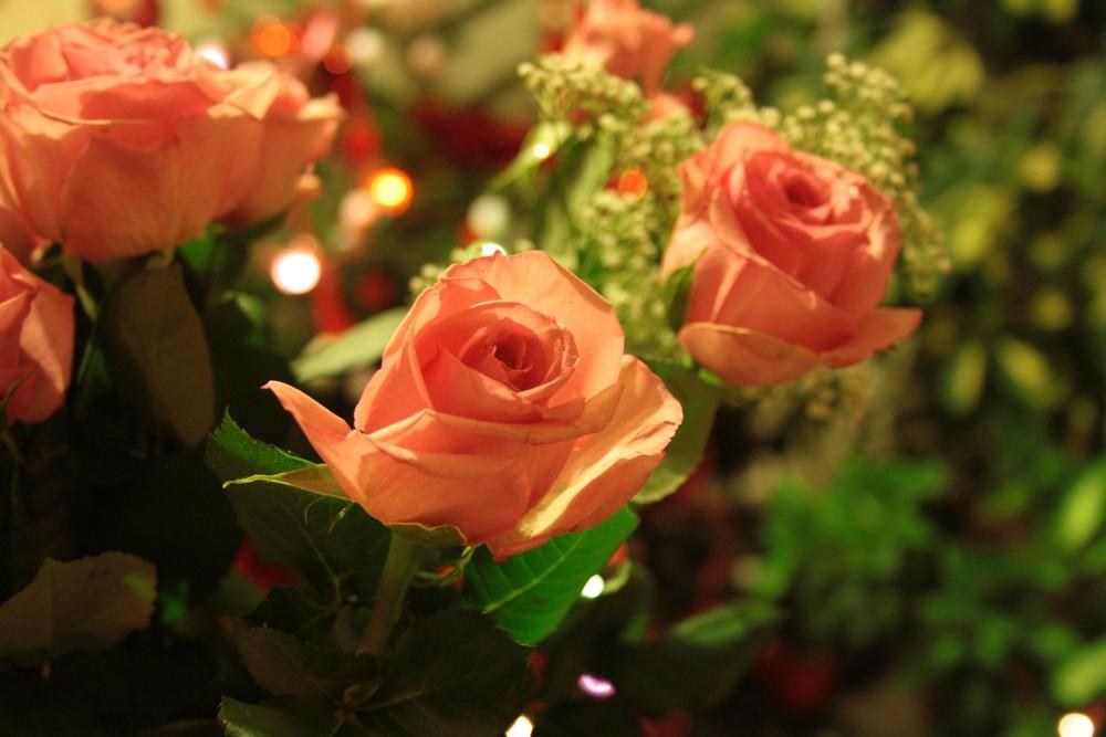 Fleur.Rose.x1000.